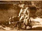 Simpson Donkey